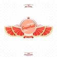 Premium quality grapefruit juice vector image vector image