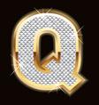 q bling bling vector image