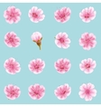 Sakura flowers icon set isolated EPS 10 vector image
