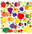 set different kinds fruits icons vector image