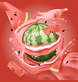 splash of watermelon juice in motion vector image vector image