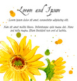 The composition of yellow sunflower painted in vector image