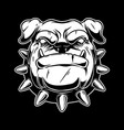 boxer dog head in vintage monochrome style design vector image vector image
