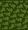 background pattern with hops with hops vector image vector image