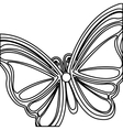 Beautiful butterfly wings vector image
