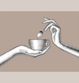 female hands with a coffee cup and spoon vector image vector image