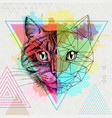hipster animal realistic and polygonal cat on vector image vector image