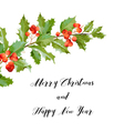 New Year and Christmas Card - Vintage Hollyberry vector image vector image