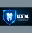 shining helthy tooth with shield and lights vector image vector image