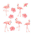 tropical birds and flowers collection pink vector image vector image