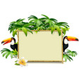 tropical frame with toucan vector image vector image