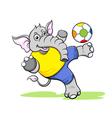 elephant football vector image