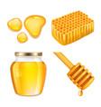 honey sticky gold honey splashes and jar melting vector image