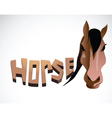 horse face color vector image