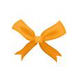 small orange bow bright decor for gift box vector image