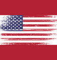 usa flag grunge vector image