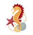 banner with a sea horse vector image