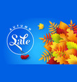 blue banner for autumn sale with autumn leaves vector image