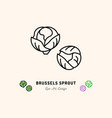 brussels sprouts icon vegetables logo cabbage vector image vector image