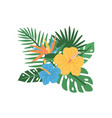 elegant natural composition with blooming tropical vector image