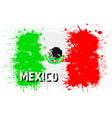 flag of mexico from blots of paint vector image