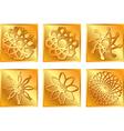 golden square symbols vector image