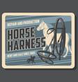 horse sport horserace equipment shop vector image vector image