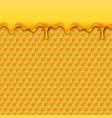 liquid honey pattern bee honeycombs and honey vector image