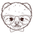 Pomeranian dog head with bow-tie and glasses vector image
