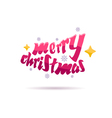 Merry Christmas beautiful letters design vector image