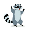 american raccoon cartoon icon in flat design vector image