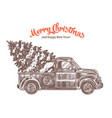 delivery christmas tree on retro pickup truck vector image