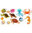 different kinds of sea animals vector image vector image