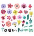flowers floral set vector image