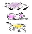 my cat vector image