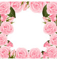pink rose flower frame border vector image