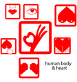 red icon human body and heart love concept vector image vector image