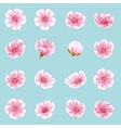 Set of Sakura flowers EPS 10 vector image vector image