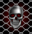 skull fence vector image vector image