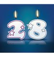 Birthday candle number 28 vector image vector image