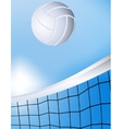 Flying volleyball vector image