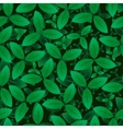 Green leaves seamless pattern imageEPS10 vector image vector image
