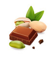 pistachios and black chocolate isolated vector image