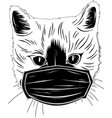 black silhouette head cat with mask protection vector image vector image