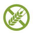 gluten free sign vector image vector image