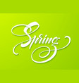 hello spring lettering hand drawn calligraphy vector image vector image