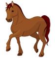 Purebred horse vector image