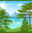 realistic pine forest sunny landscape vector image vector image