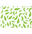 seamless pattern with green tea leaves on white vector image vector image