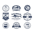 Set of badges stickers on catching fish vector image
